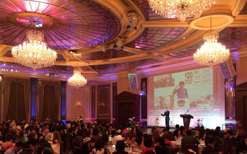 The Han-Schneider International Children's Foundation Benefit Dinner and Auction Is A Huge Success