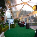 Taglyan Complex Blog - 2016 Hollywood Central Park Gala 12