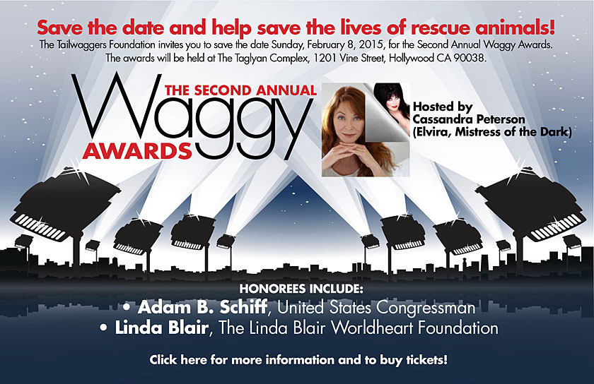 2015 Waggy Awards at Taglyan Complex