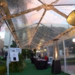 Taglyan Complex Blog - 2016 Hollywood Central Park Gala 11