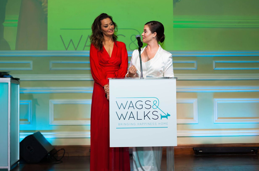 Taglyan Complex Stage At 9th Annual Wags And Walks